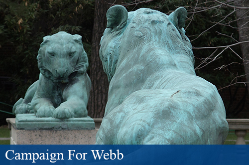 Campaign For Webb