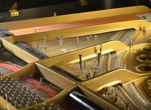 Dr. David Porter's piano
