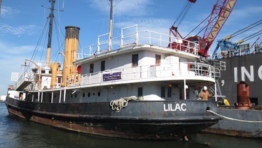 Steamship Lilac