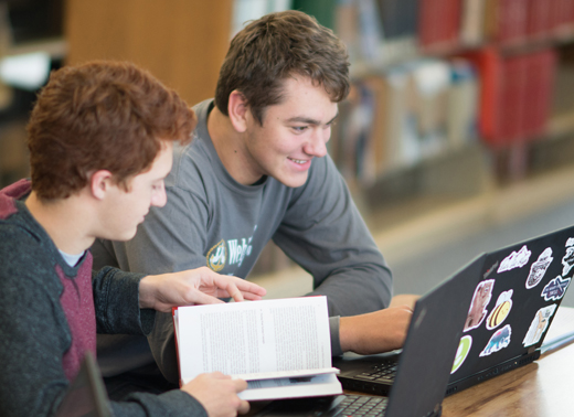 Students studying in the Livingston Library